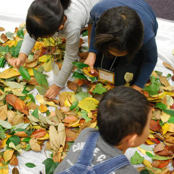 2009年10月25日(日)<br>「はっぱの絵本」<br>(小学生クラス)in慶應日吉